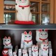 招福猫児(まねぎねこ)の寺、世田谷豪徳寺